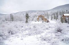 Śnieżny biel zdjęcie royalty free