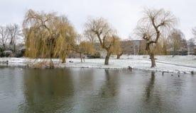 Śnieżny Cambridge, 2018 Zdjęcie Stock
