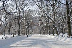 śnieżny centrum handlowe środkowy park obrazy royalty free