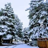 Śnieżny czas obrazy royalty free