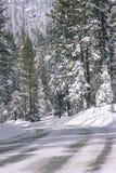Śnieżny Drogowy pobliski Las Obraz Royalty Free