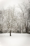 Śnieżny dzień Zdjęcie Royalty Free
