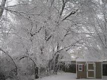 Śnieżny dzień zdjęcia royalty free