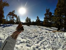 Śnieżny dzień Obraz Royalty Free