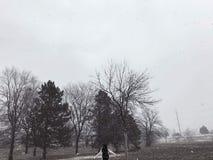 Śnieżny dzień fotografia stock