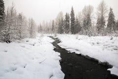 Śnieżny dzień wokoło Whistler wioski - Fitzsimmons zatoczka Zdjęcie Stock