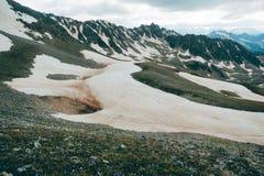 Śnieżny halftone góry krajobraz z purpura kwiatami i głownie chmurnym niebem Obraz Stock