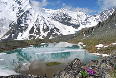 Śnieżny Halny szczyt w sercu lodowa park narodowy w Montana, usa Obrazy Royalty Free