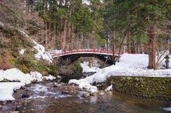 Śnieżny Japonia most Obraz Stock