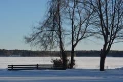 Śnieżny jezioro fotografia royalty free