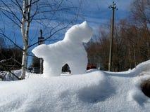 Śnieżny koński światło słoneczne Zdjęcie Royalty Free