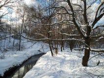 Śnieżny krajobraz nonfreezing Ramenka rzeka w zima wieczór moscow Rosja Obraz Stock