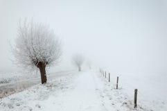 Śnieżny krajobraz w zimie zdjęcie royalty free