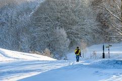 Śnieżny krajobraz z ładującymi drzewami i mężczyzna podróżuje na a zdjęcie royalty free