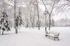 Śnieżny krajobraz z ławkami Obraz Royalty Free