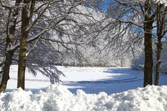 Śnieżny landascape Zdjęcia Stock