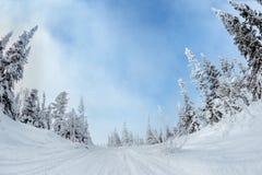 Śnieżny las w góry niebieskim niebie Obraz Stock