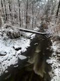 Śnieżny lasowy strumień fotografia stock