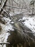 Śnieżny lasowy strumień Obrazy Stock