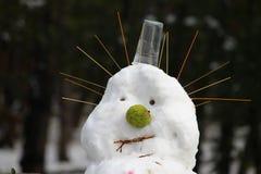Śnieżny mężczyzna 01 Obrazy Royalty Free