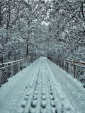 Śnieżny most obrazy royalty free