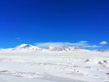Śnieżny obszar trawiasty w zimie zdjęcia royalty free