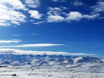 Śnieżny obszar trawiasty w zimie obraz stock