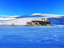 Śnieżny obszar trawiasty w zimie fotografia royalty free