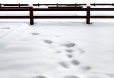 Śnieżny pole. Ogrodzenie. Obraz Royalty Free