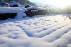 Śnieżny pole w zimie zdjęcie stock