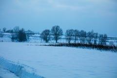Śnieżny pole z drzewami obrazy stock