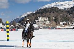 Śnieżny polo puchar świata Sankt Moritz 2016 Obrazy Royalty Free