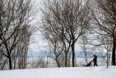Śnieżny przespacerowanie w Vermont fotografia stock