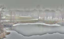 Śnieżny ranek W central park Zdjęcie Stock