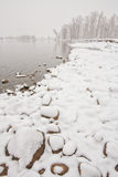 Śnieżny Riverbank krajobraz zdjęcie royalty free
