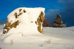 śnieżny sceny pustkowie Zdjęcia Stock
