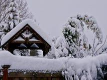 Śnieżny SE Portland Portlandzki teren Uderzający Z Historycznym opadem śniegu -1/11/2017 USA_ LUB Zdjęcie Stock
