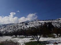 Śnieżny spacer Zdjęcia Royalty Free