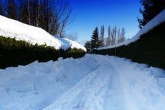 śnieżny spacer obrazy royalty free