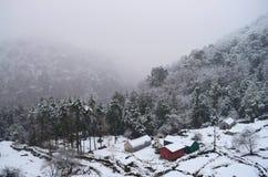 Śnieżny spadek, Mglista dolina, budy i drzewa, - zima w Indiańskiej wiosce w Uttarakhand w himalaje zdjęcia royalty free