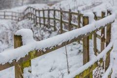 Śnieżny spadku ogrodzenie Zdjęcie Royalty Free