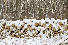 Śnieżny stos drzewne bele obrazy royalty free