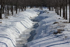 Śnieżny strumień Zdjęcia Stock