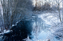 Śnieżny strumyk po środku drewien obraz royalty free