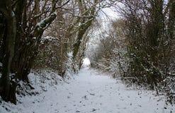 Śnieżny tunel Obraz Royalty Free