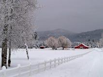 śnieżny wejściowy koński rancho zdjęcie royalty free