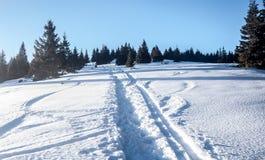 Śnieżny wycieczkuje ślad z drzewami i jasnym niebem w Mala Fatra górach w Sistani Zdjęcia Royalty Free