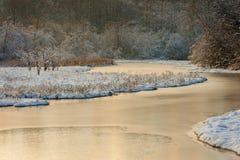 Śnieżny wyspy bagna przy zmierzchem Fotografia Royalty Free