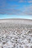 Śnieżny wzgórze Obraz Royalty Free