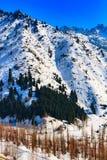 Śnieżny zimy góry tło Fotografia Stock